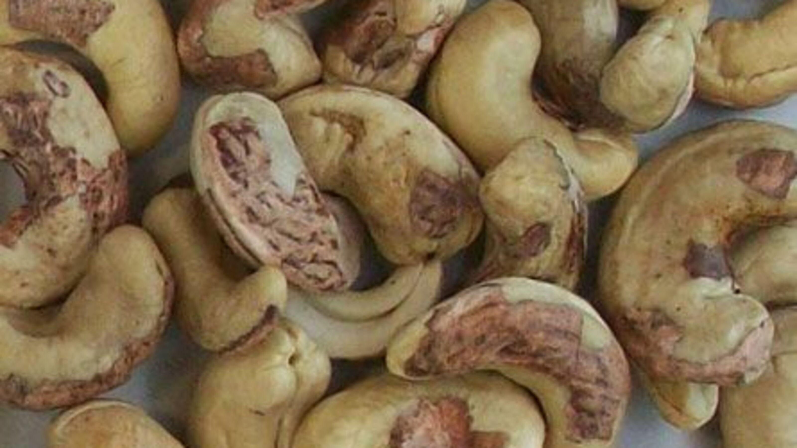 Cashew Reject Quality
