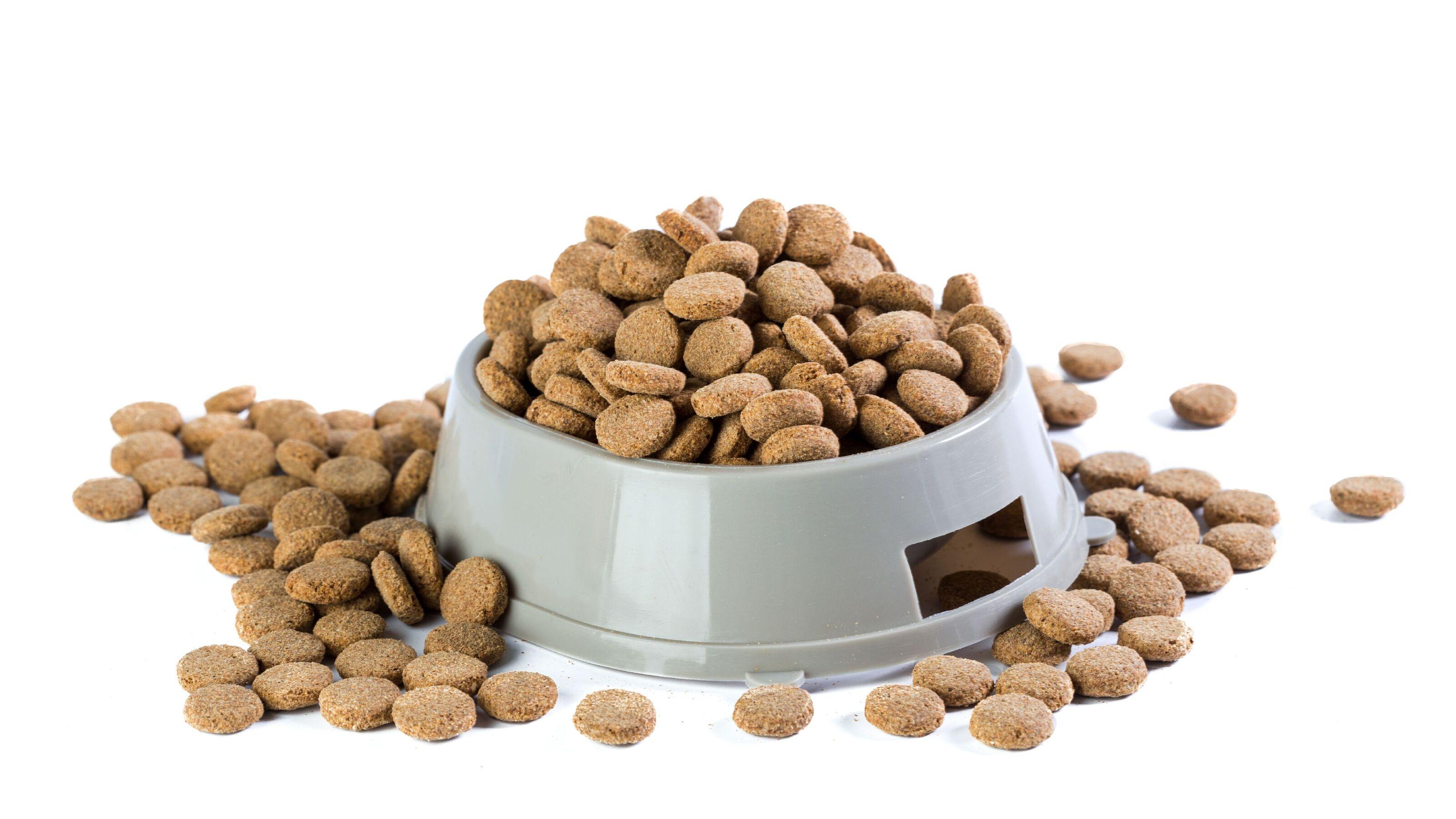 pet food extrudate